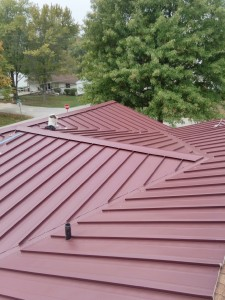 Jim Cobb roof
